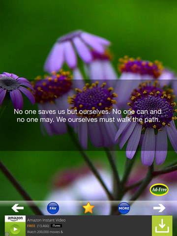 Buddha Quotes 500 screenshot