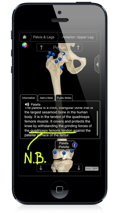 Skeleton System Pro III - iPhone Edition - iPhone Mobile Analytics and App Store Data