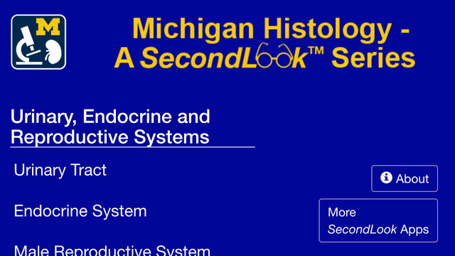 Histology - Urinary-Endocrine-Reproductive Systems