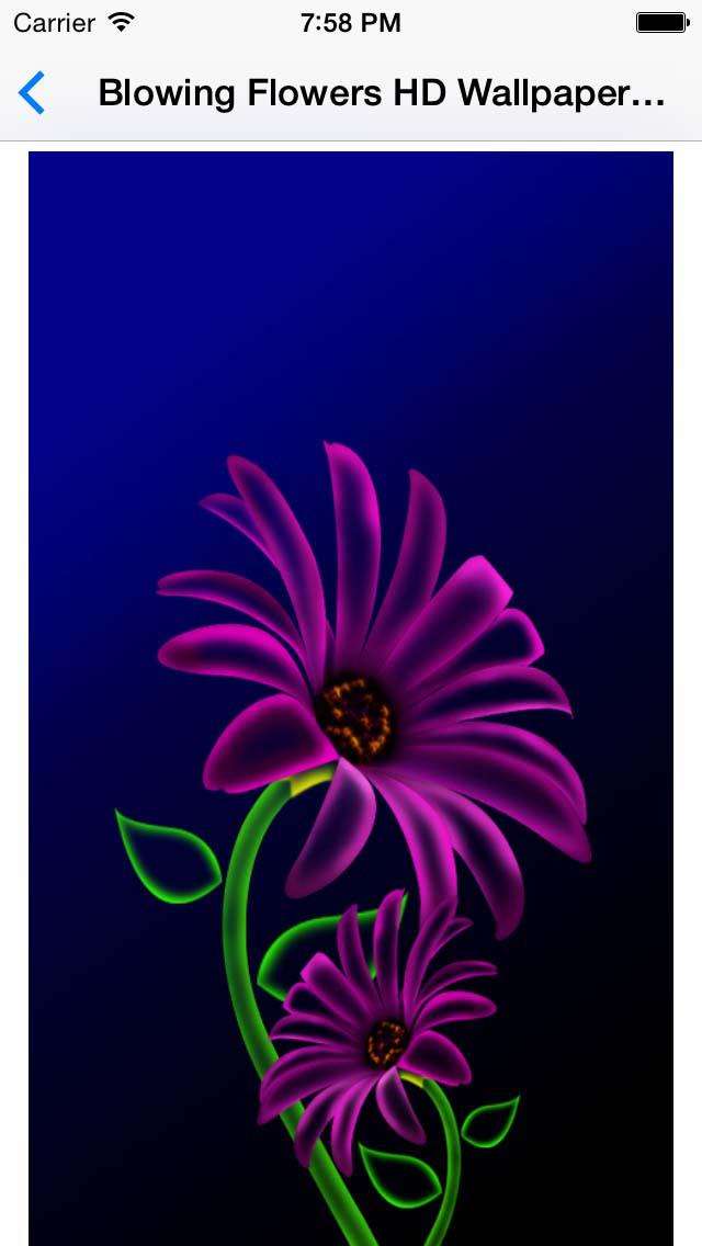 Flowers HD wallpaper for whatsapp