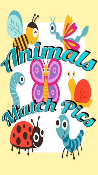 Animals Match Pics - The Game