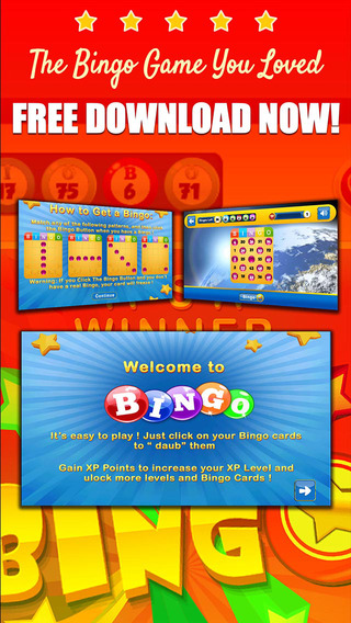 BINGO LUCKY STAR - Play Online Casino and Gambling Card Game for FREE