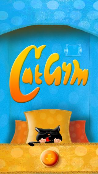 Cat Gym Black