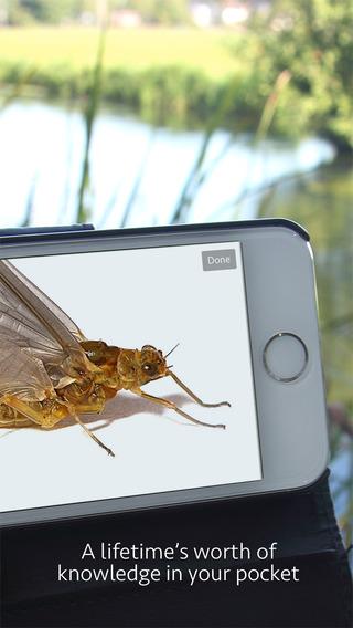 Android遊戲 - 請問candy crush無法與fb同步 - 遊戲討論區 - Mobile01