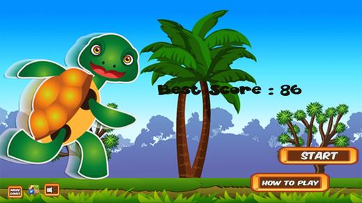 Ninja Running Turtle Pro - Run And Jump In The Fun Dojo 3D Game For Kids