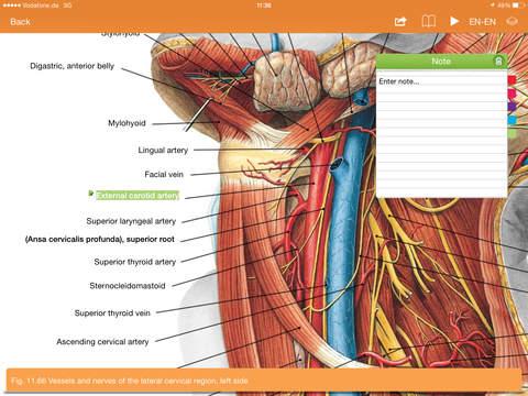 Sobotta Anatomy Atlas Free - iOS Medical Apps - AppDropp
