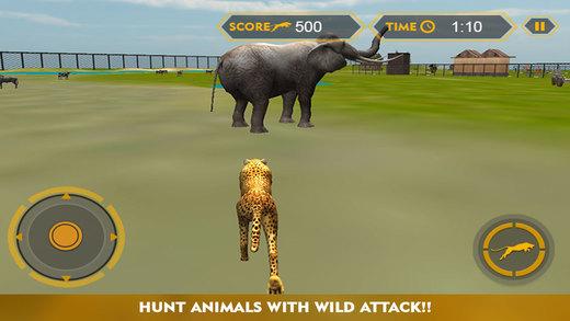 Wildlife cheetah Attack simulator 3D – Chase the wild animals hunt them in this safari adventure