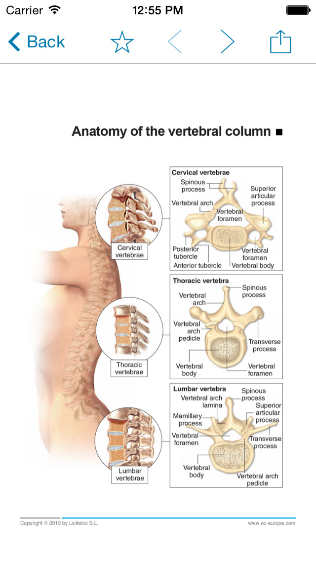 App Shopper: Miniatlas Diseases of the vertebral column (Medical)