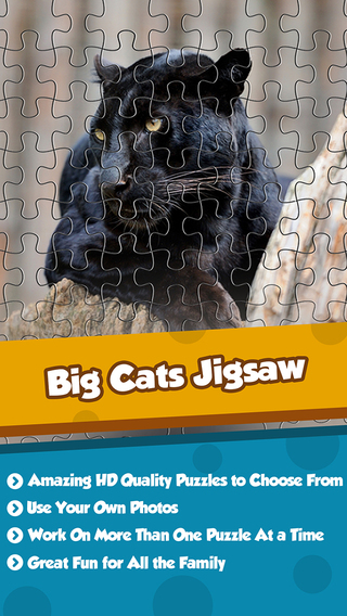 Big Cats Puzzle Pro - Forge The Jigsaw From Unscrambled Pieces