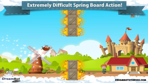 Springboard Sanity