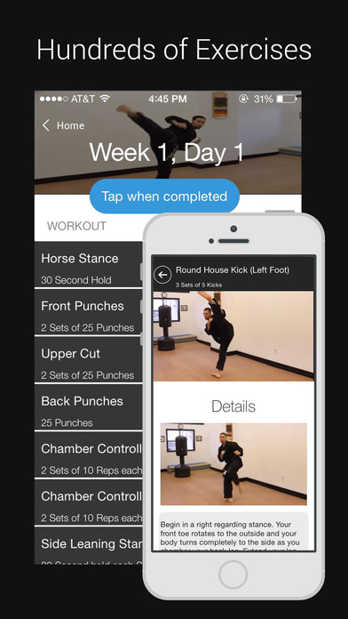Learn Karate: Beginner to Advanced Lessons screenshot