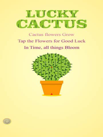 Lucky Cactus Lite
