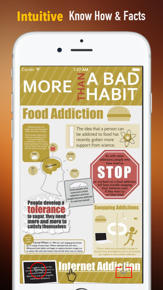 Food Addicts Recovery Self Help Handbook: Solutions Guide and Video