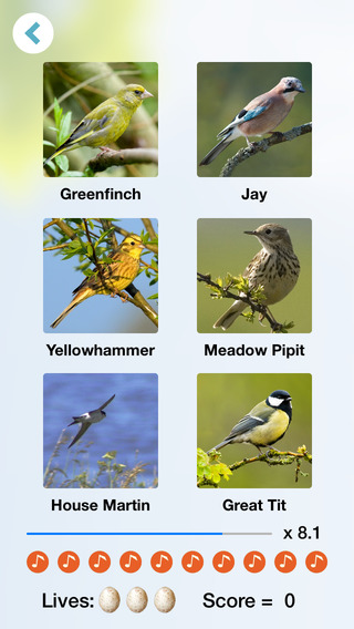 Chirp! Bird Songs Europe (original) iPhone Screenshot 2