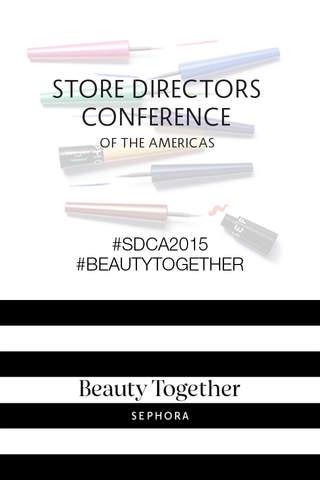 SDCA 2015 screenshot 1