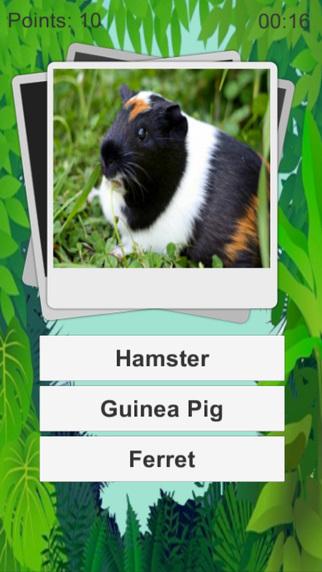 Animal Quiz Kids