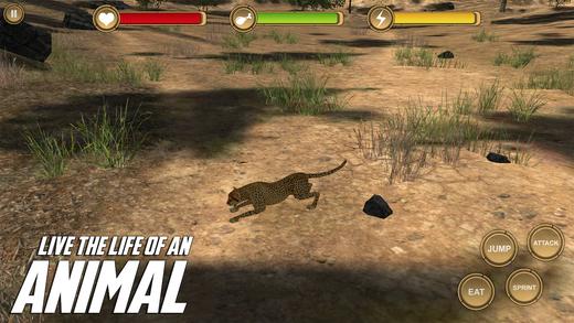 Cheetah Simulator HD Animal Life