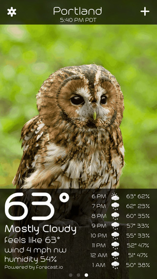 Owl Weather