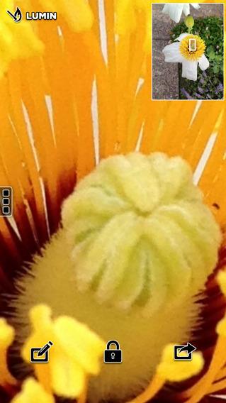 Lumin - 电子放大镜[iOS]丨反斗限免