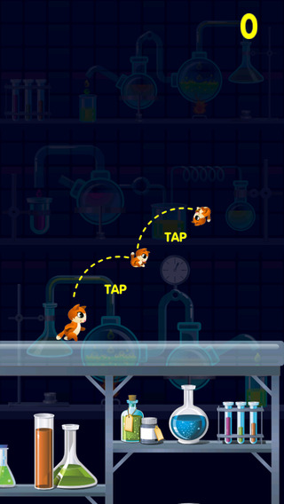 Kitty Cat Jump City - Don't Get Boxed In Trying To Find Food