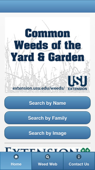 Common Weeds of the Utah Yard and Garden