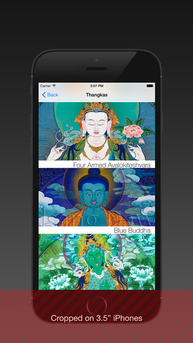 BuddhaPik iPhone Screenshot 5