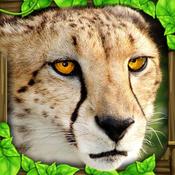 Cheetah Simulator