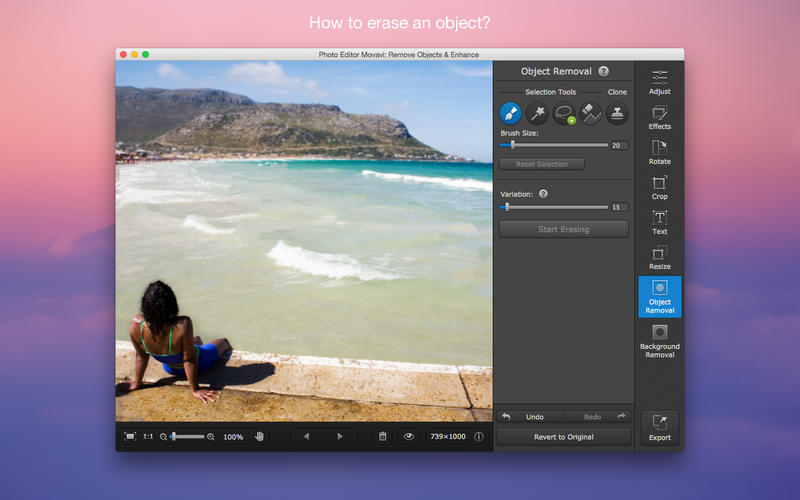 Photo Editor Movavi: Remove Objects & Enhance Programos iPhone / iPad screenshot
