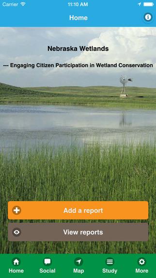 NE Wetland