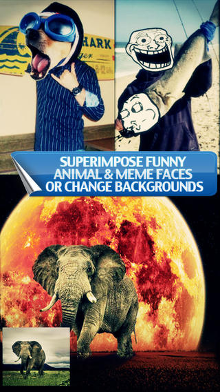 Pic Blender - Overlap Photos Superimpose Funny Animal Meme Faces - Give it a Double Exposure look