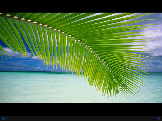 Photosphere iPad Screenshot 2