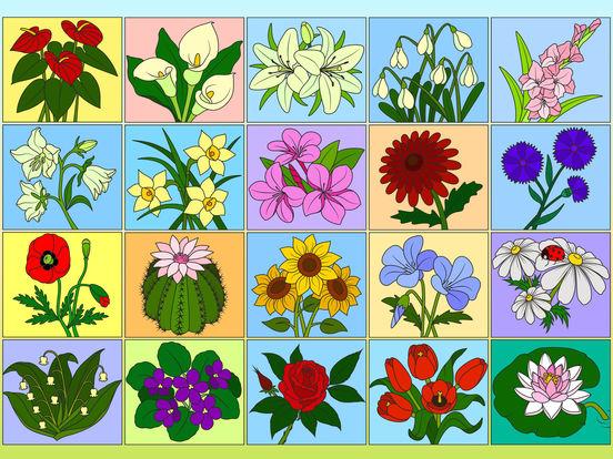 Раскрась по номерам - Цветы