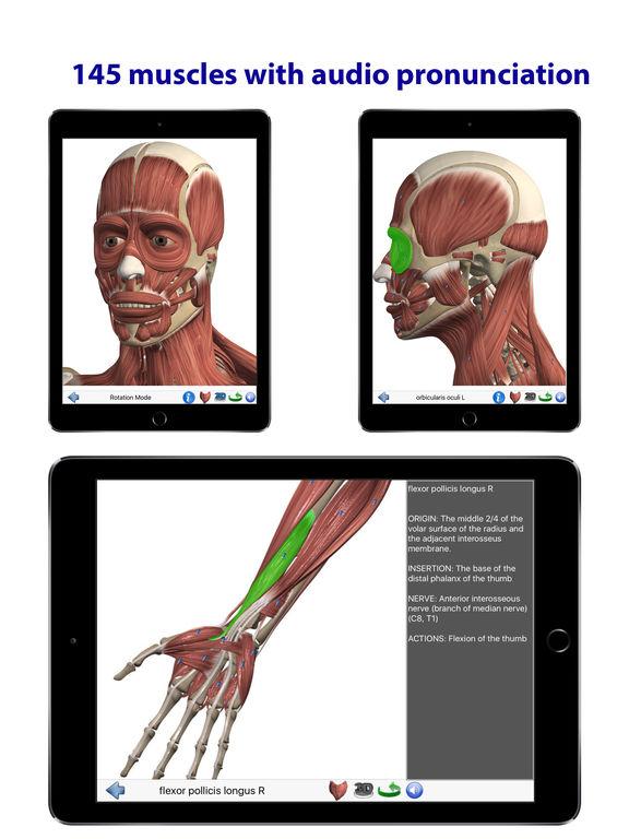 Visual anatomy app