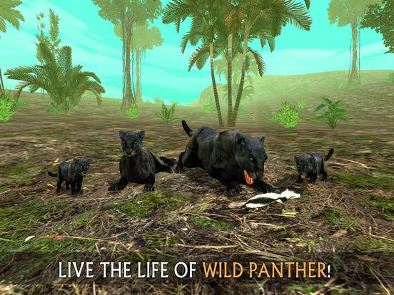 Wild Panther Sim 3D: Rainforest RPG Adventuresscreeshot 1