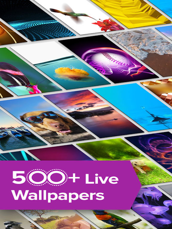 live wallpapers custom dynamic backgrounds hd on the app