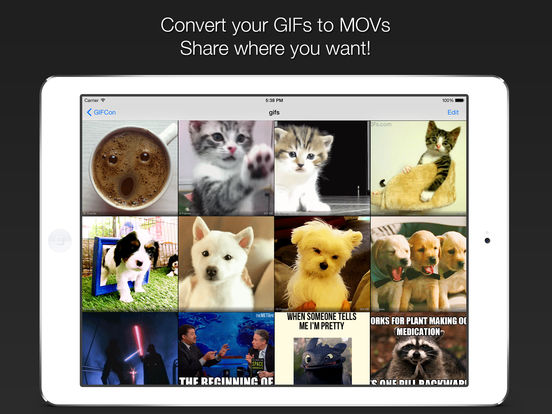 GIFCon - Convert GIFs to video Screenshots