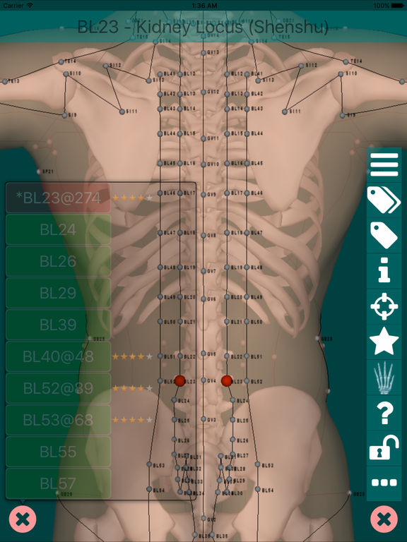 Massage Map 3D Free screenshot
