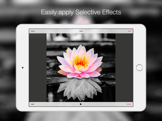 Bitpoem - Photo Filters and Effects Screenshot