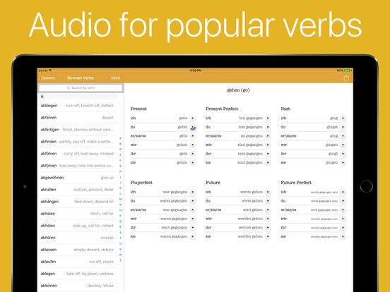 German Verb Conjugator Pro Screenshots