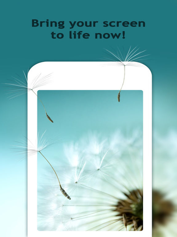 10000+ themify for Live wallpapers & theme hd Screenshots