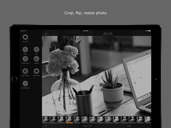 LineEngraver: Greyscale Photography Screenshots