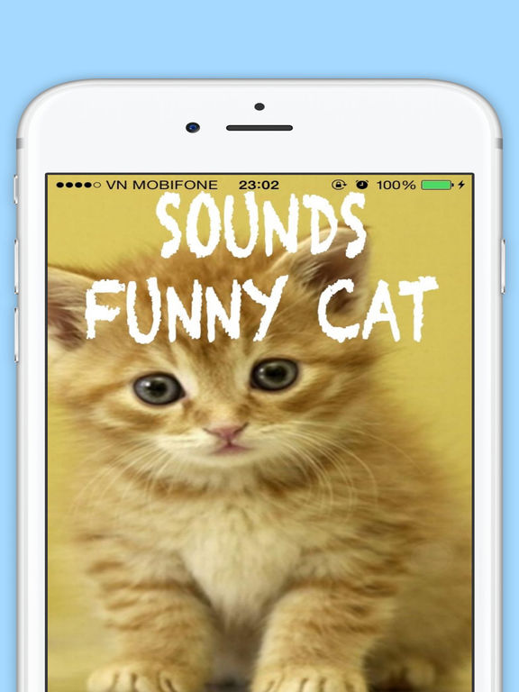 lucy cat tumblr
