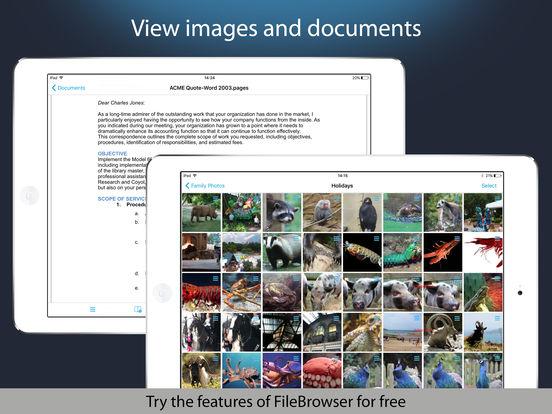 NetPortalLite - Access files on remote computers iPad Screenshot 3