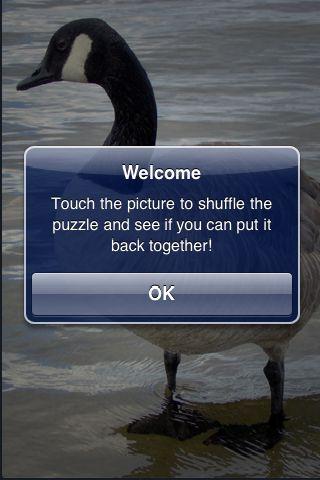 SlidePuzzle - Goose screenshot #2