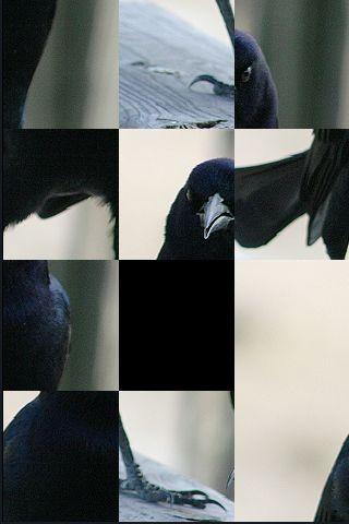SlidePuzzle - Crow screenshot #1