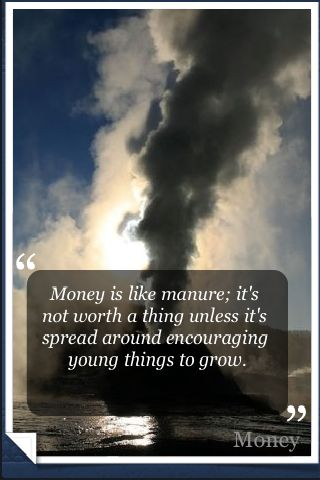 Money Quotes screenshot #1