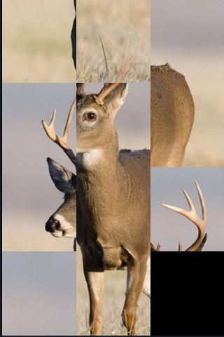 SlidePuzzle - Deer screenshot #1