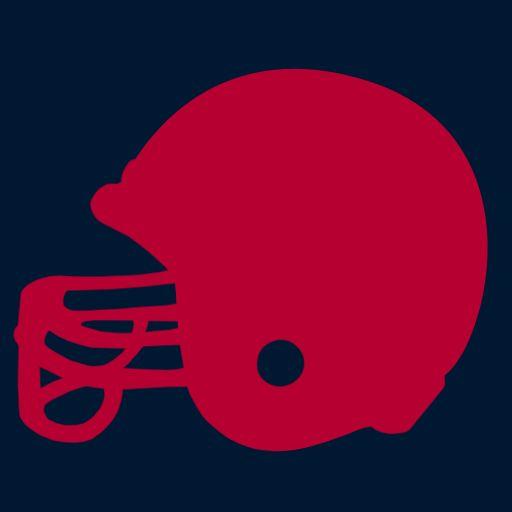 Football Fans - Houston