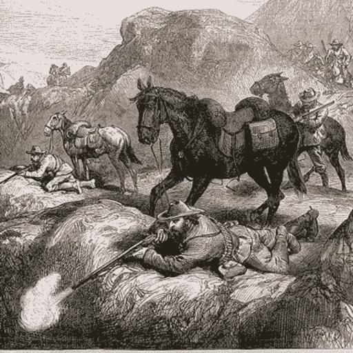 Boer Wars Study Guide