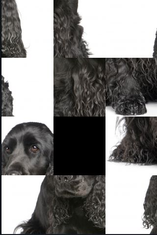 SlidePuzzle - Cocker Spaniel screenshot #1